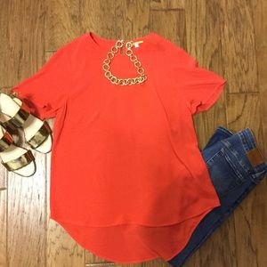 NWT Gianni Bini top